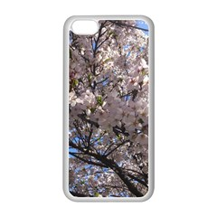 Sakura Tree Apple iPhone 5C Seamless Case (White)