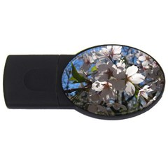 Cherry Blossoms 1GB USB Flash Drive (Oval)