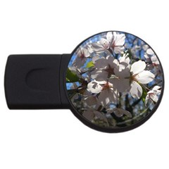 Cherry Blossoms 4gb Usb Flash Drive (round)