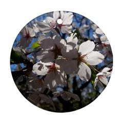 Cherry Blossoms Round Ornament (Two Sides)