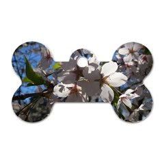 Cherry Blossoms Dog Tag Bone (One Sided)