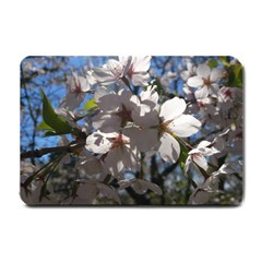 Cherry Blossoms Small Door Mat