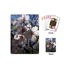 Cherry Blossoms Playing Cards (mini)