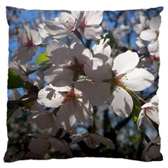 Cherry Blossoms Large Cushion Case (single Sided)