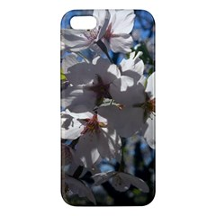 Cherry Blossoms iPhone 5S Premium Hardshell Case