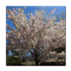 Cherry Blossoms Tree Ceramic Tile