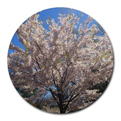 Cherry Blossoms Tree 8  Mouse Pad (Round)