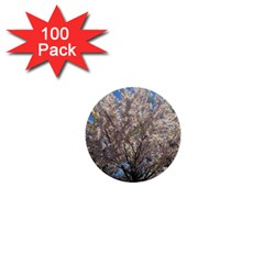 Cherry Blossoms Tree 1  Mini Button (100 pack)