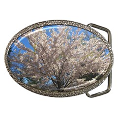 Cherry Blossoms Tree Belt Buckle (oval)