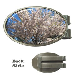 Cherry Blossoms Tree Money Clip (Oval)