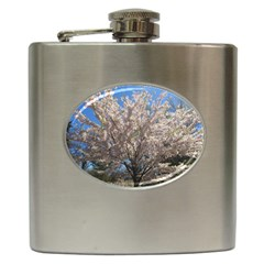 Cherry Blossoms Tree Hip Flask