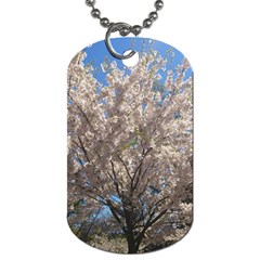 Cherry Blossoms Tree Dog Tag (two Sided)