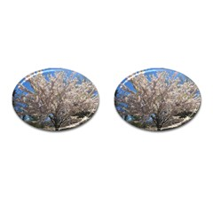Cherry Blossoms Tree Cufflinks (Oval)