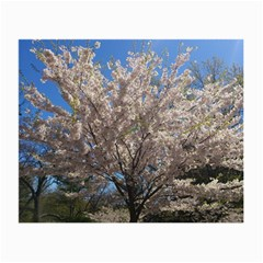 Cherry Blossoms Tree Glasses Cloth (Small, Two Sided)