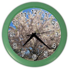 Cherry Blossoms Tree Wall Clock (color)