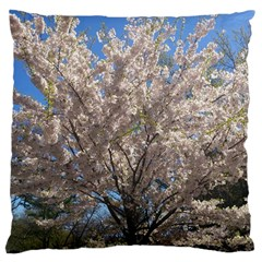 Cherry Blossoms Tree Large Cushion Case (Single Sided)