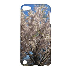 Cherry Blossoms Tree Apple iPod Touch 5 Hardshell Case