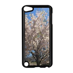 Cherry Blossoms Tree Apple iPod Touch 5 Case (Black)