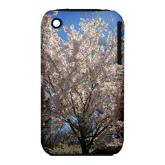 Cherry Blossoms Tree Apple iPhone 3G/3GS Hardshell Case (PC+Silicone)