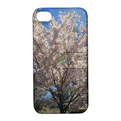 Cherry Blossoms Tree Apple Iphone 4/4s Hardshell Case With Stand