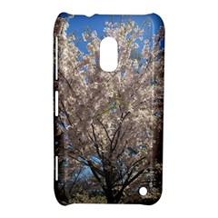 Cherry Blossoms Tree Nokia Lumia 620 Hardshell Case