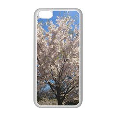 Cherry Blossoms Tree Apple iPhone 5C Seamless Case (White)