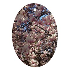 Sakura Oval Ornament
