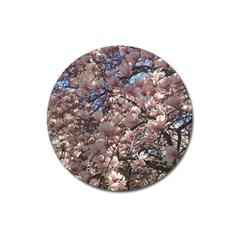 Sakura Magnet 3  (Round)