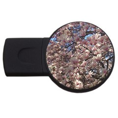 Sakura 2gb Usb Flash Drive (round)