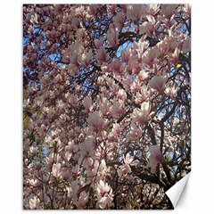 Sakura Canvas 16  x 20  (Unframed)