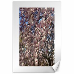 Sakura Canvas 24  x 36  (Unframed)