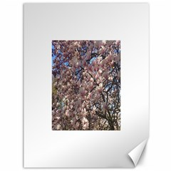 Sakura Canvas 36  X 48  (unframed)