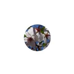 Cherry Blossoms 1  Mini Button
