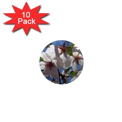 Cherry Blossoms 1  Mini Button Magnet (10 pack)