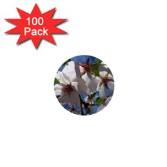 Cherry Blossoms 1  Mini Button (100 pack)