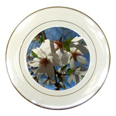 Cherry Blossoms Porcelain Display Plate