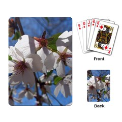 Cherry Blossoms Playing Cards Single Design