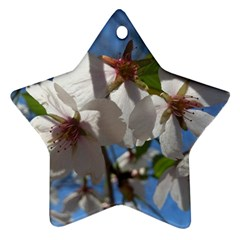 Cherry Blossoms Star Ornament (two Sides)
