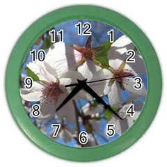 Cherry Blossoms Wall Clock (Color)