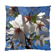 Cherry Blossoms Cushion Case (Two Sided)