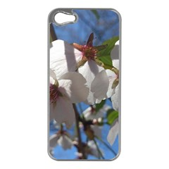 Cherry Blossoms Apple iPhone 5 Case (Silver)