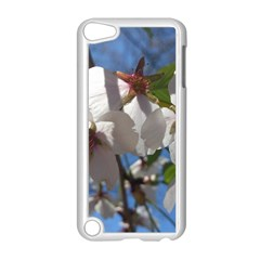 Cherry Blossoms Apple iPod Touch 5 Case (White)