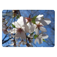 Cherry Blossoms Samsung Galaxy Tab 10.1  P7500 Flip Case