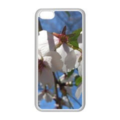 Cherry Blossoms Apple Iphone 5c Seamless Case (white)