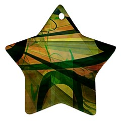 Untitled Star Ornament (two Sides)