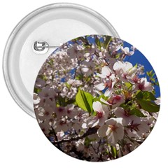 Cherry Blossoms 3  Button