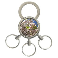 Cherry Blossoms 3-Ring Key Chain