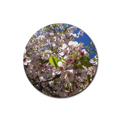 Cherry Blossoms Drink Coaster (round)