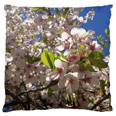 Cherry Blossoms Large Cushion Case (Two Sided)