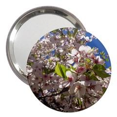Cherry Blossoms 3  Handbag Mirror